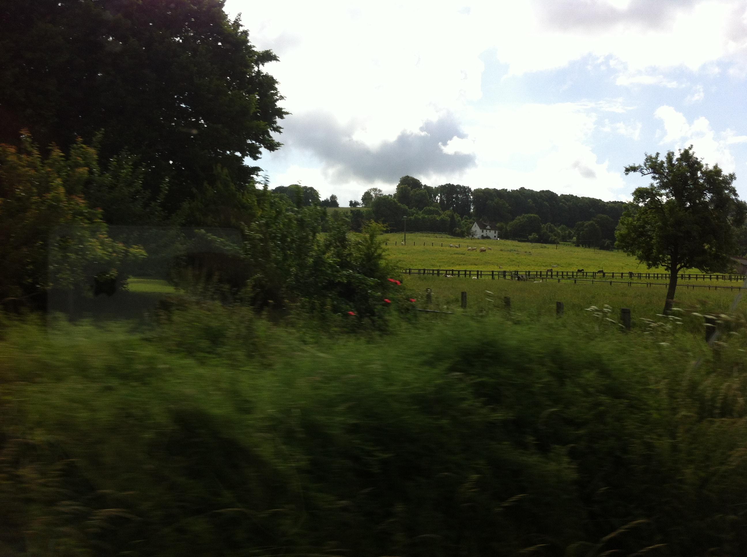 Die grünen Felder der Normandie